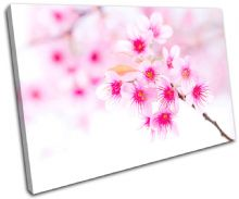 Cherry Blossoms Floral - 13-1543(00B)-SG32-LO